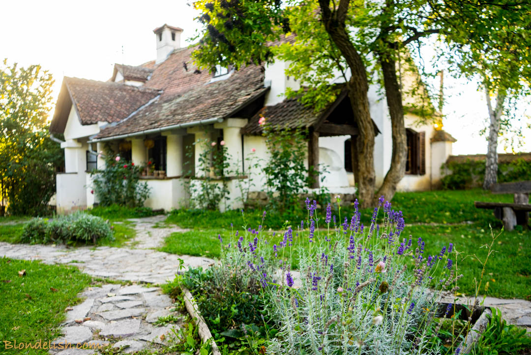 Countryside restored house in Transylvania, Count Kalnoky's mansion , Travel