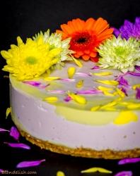 Rainbow cheesecake with matcha, turmeric and blueberries